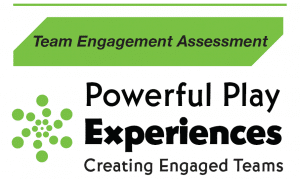 Team Engagement Assessment